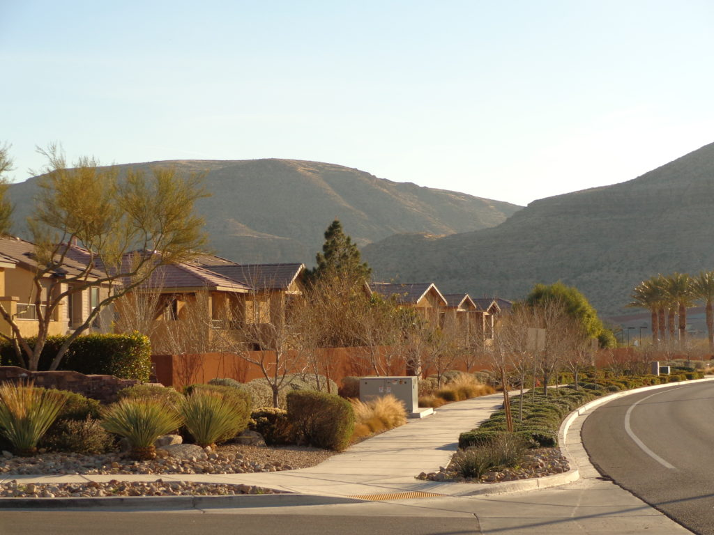 Homes in Summerlin